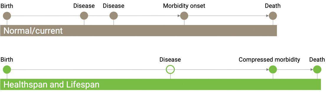 Longevity Technology HEalthspan Lifespan